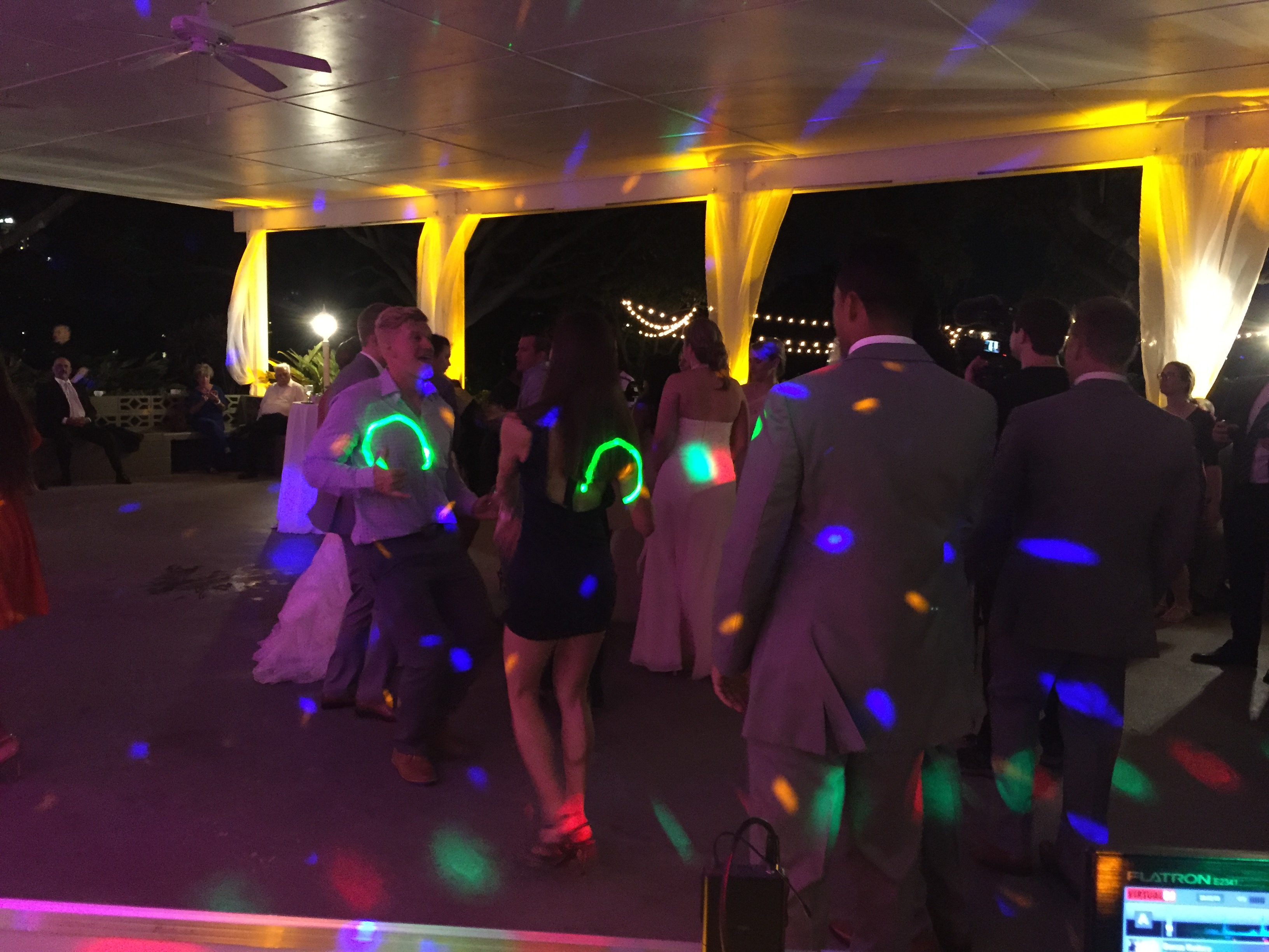 Professional DJ for Weddings